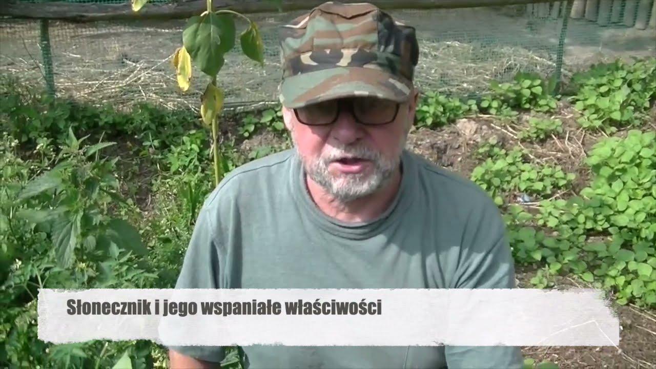 Az alkoholizmus kódolására a donyecki térségben - Dohányzás kódolás luhanszk