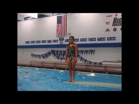 Ali An at state diving for second straight year in 2017