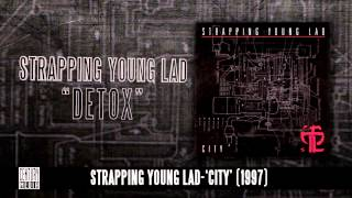 STRAPPING YOUNG LAD - Detox (Album Track)