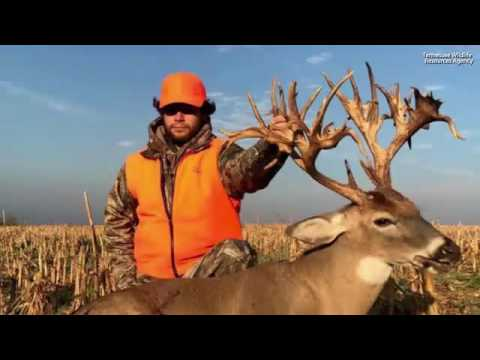 47 Point Buck is a Possible World Record
