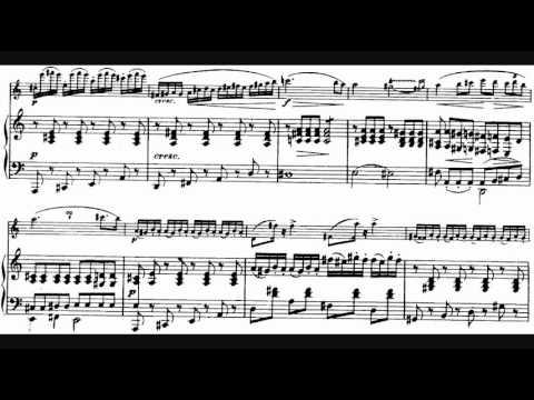 Schubert - Arpeggione Sonata in A minor (played on the arpeggione), D. 821 (1824)