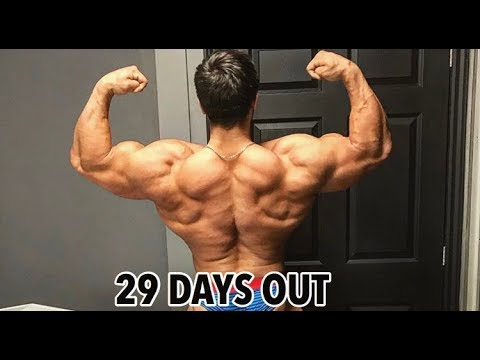 Physique Update | 29 DAYS OUT New York Pro