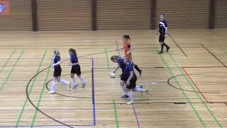 Naisten futsal-liiga 2018-2019 / Team VanPa vs. Ylöjärven Ilves maalikooste 3.3.2019