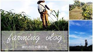 もっと田舎暮らしと健康を極めたいあなたへ... オープンチャット始めました。 「オーガニックで健康的な田舎暮らし」 http://bit.ly/2Vu8yUd 健康、時給自足、田舎暮らしを目指す ...