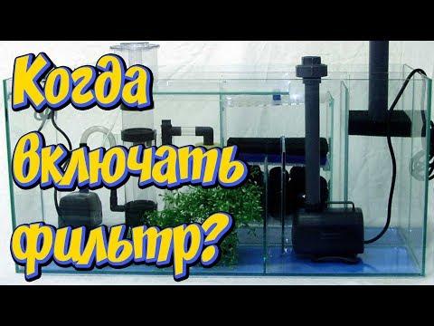 НА СКОЛЬКО ЧАСОВ ВКЛЮЧАТЬ ФИЛЬТР В АКВАРИУМЕ! Сколько должен работать фильтр в аквариуме!