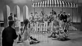 The Beach Boys - Surfin' USA/Things We Did Last Summer