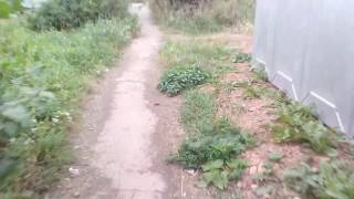 Тротуары в Копейске...