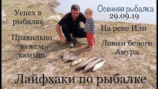 Осеняя рыбалка на Амура и сазана 29.09.2019 лайфхаки рыбалки