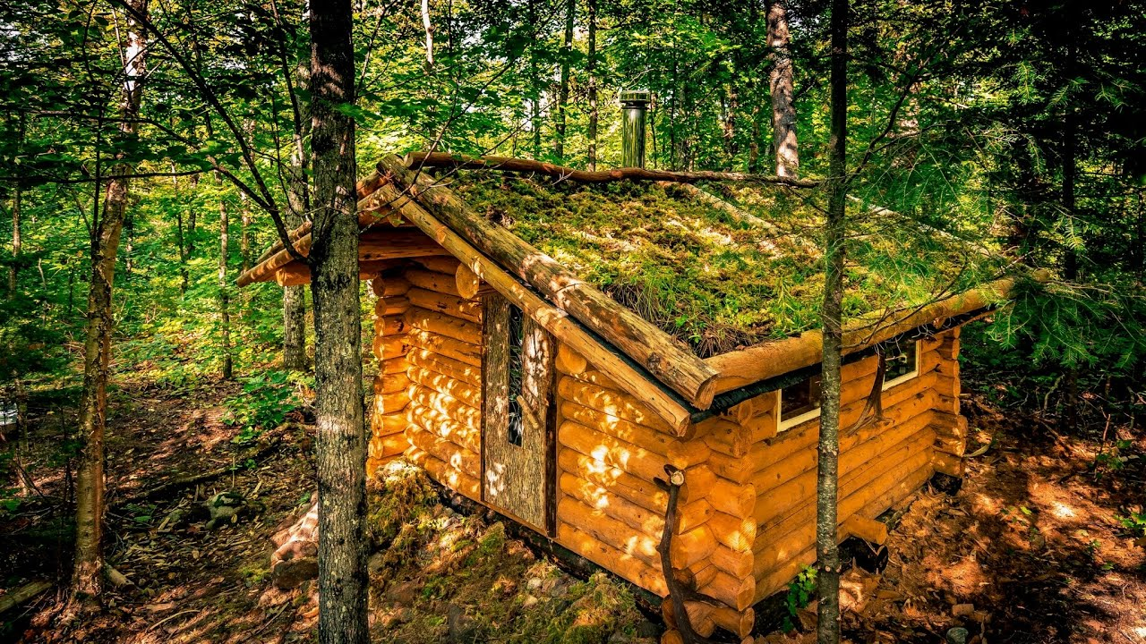 My Self Reliance Off Grid Sauna in the Forest | Living Roof and Log Cabin Walls