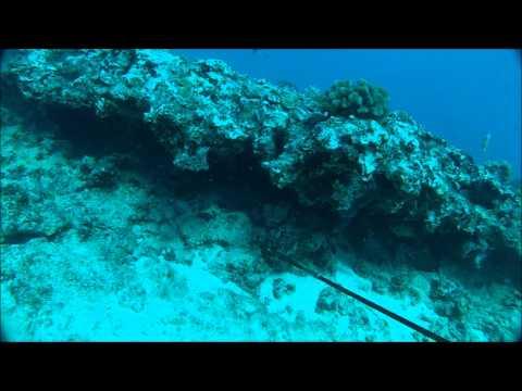 Spearfishing Hawaiian Style 1.0 (3 Prongin)