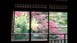 京都と滋賀県の秋のオススメスポットを自分なりに考えて作成しました。