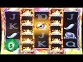 ++NEW Phoenix slot machine, DBG