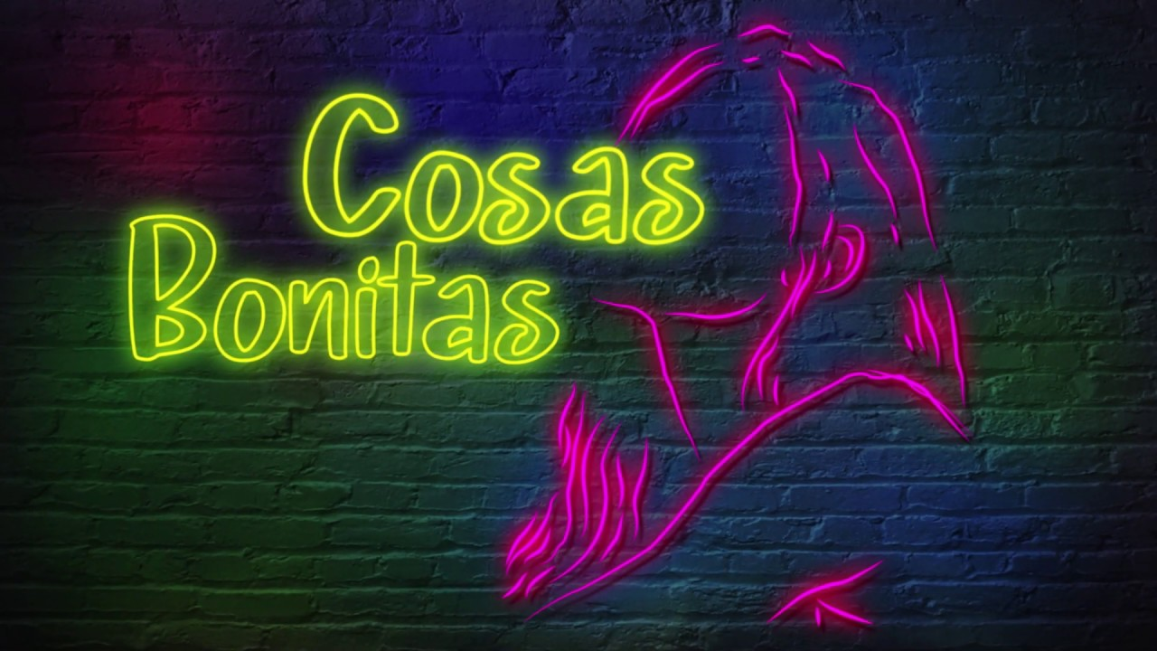 Grupo Niche Cosas Bonitas Video Lyric