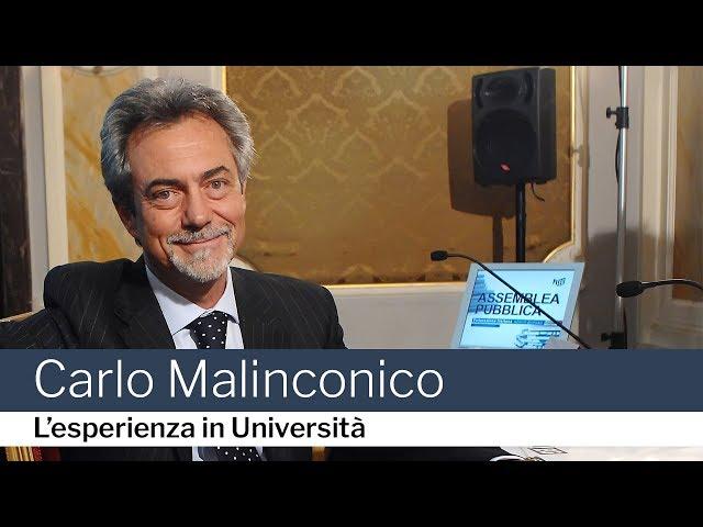 Carlo Malinconico, l'esperienza in Università