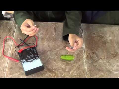 SMAN 1 GIRI Banyuwangi - How Starfruits product electricity (5th group)
