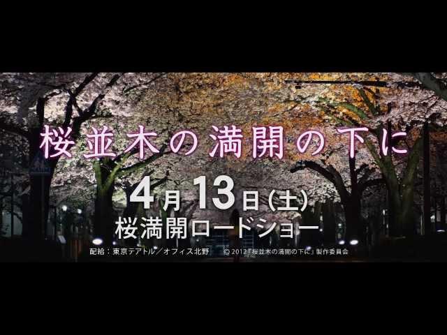 映画『桜並木の満開の下に』TV CM(30秒)