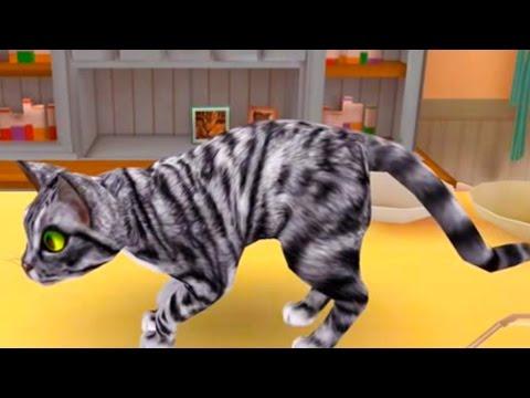 Мой приют для кошек играем в CatHotel игра как мультик про котят видео для детей #ПУРУМЧАТА