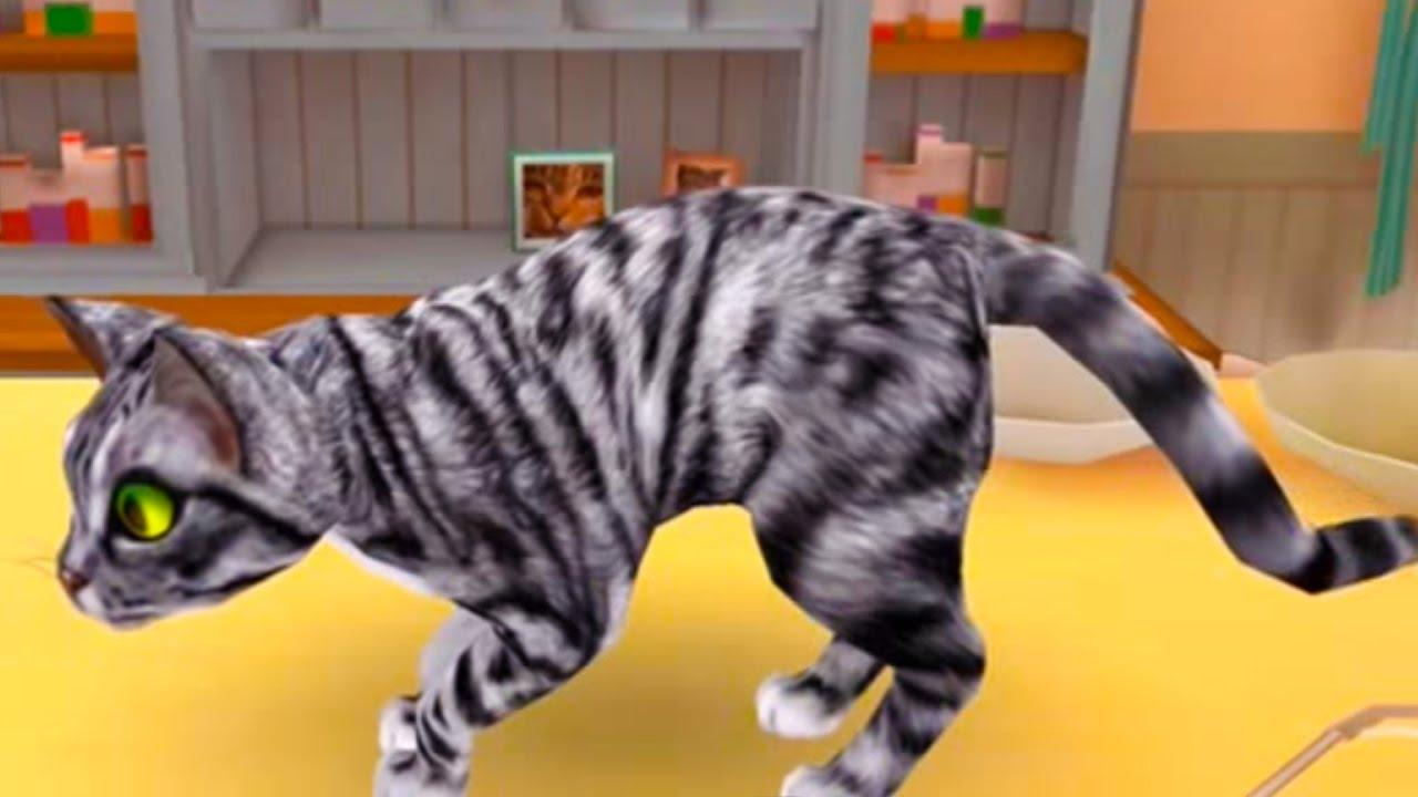 Игры про котов и котят с кошками