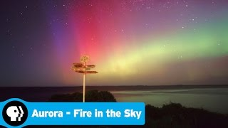 AURORA - FIRE IN THE SKY | Official Trailer | PBS