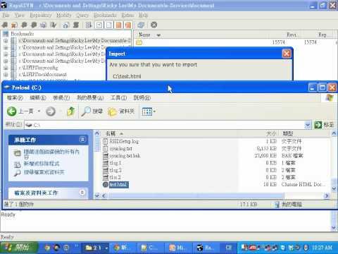 RapidSVN demo
