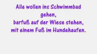 Die Ärzte - Sommer nur für mich (+ lyrics)