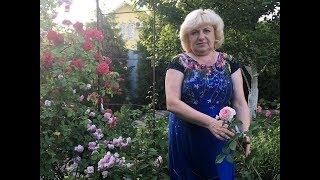 Полиантовая роза Обрезка Уход