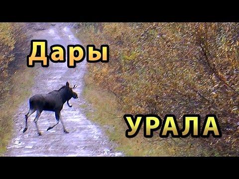 Дары Урала (Путешествие