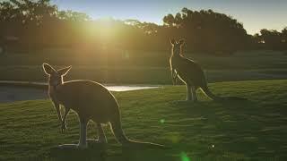 Horizons Golf Resort - Port Stephens premier golf course
