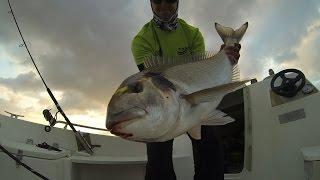 PESCA DORADA GIGANTE  2 El Tanero Fishing