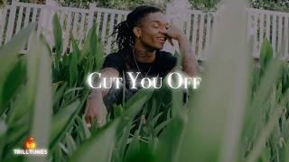 Rae Sremmurd - Cut You Off Ft. Travis Scott (NEW 2018)