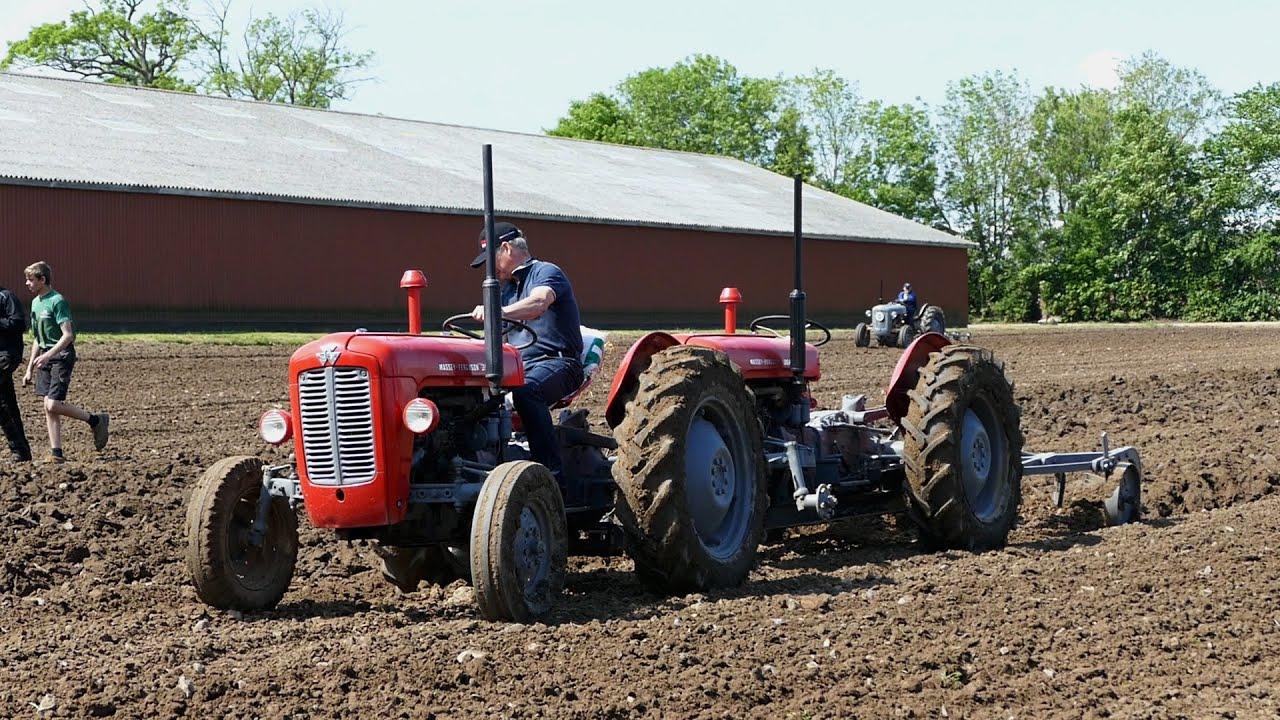 massey ferguson 35 tandem tractor ploughing w 4 furrow. Black Bedroom Furniture Sets. Home Design Ideas