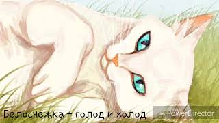 Смерти котов - воителей. #2
