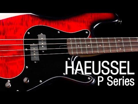 Haeussel P-Series