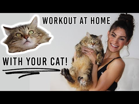 How To Workout At Home WITH YOUR CAT! | Alya Amsden
