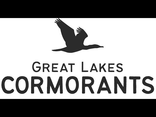Bad Reputations: Cormorants and Conservation
