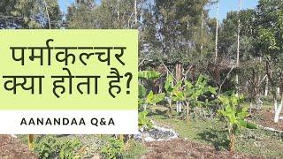 QnA | पर्माकल्चर क्या होता है? (हिन्दी में)/What is Permaculture? (ENGLISH SUBTITLES)