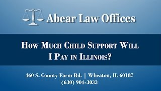 [[title]] Video - How Much Child Support Will I Pay in Illinois?
