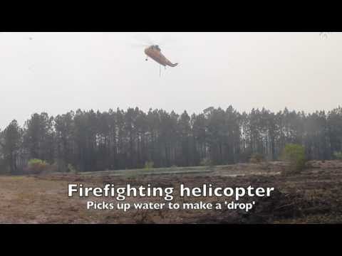 Firefighting Monday in Okefenokee Swamp