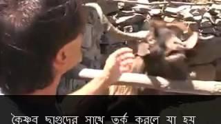 Never argue with ISKON goats and Gauriya Vaishnabs