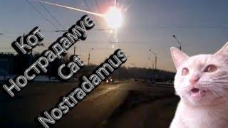 ✅Падение метеорита в Челябинске / Cat Nostradamus