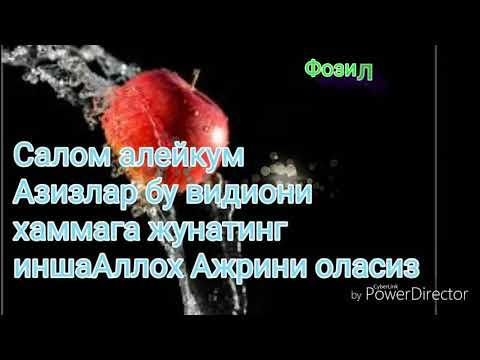ФОЗИЛ КОРИ НАСИХАТЛАРИ MP3 СКАЧАТЬ БЕСПЛАТНО