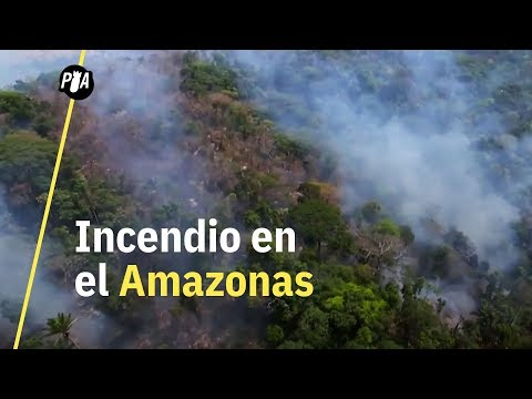 ¿Por qué el incendio en el Amazonas es un riesgo para el mundo?