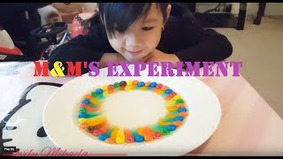 M&M's Rainbow Magic Experiment || #4 Science Experiments
