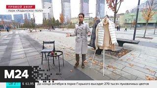 """Смотреть видео """"Утро"""": в столице ожидается дождь и ветер - Москва 24 онлайн"""