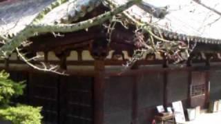 太山寺.wmv