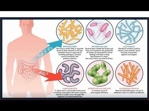 Probiotics and SCI