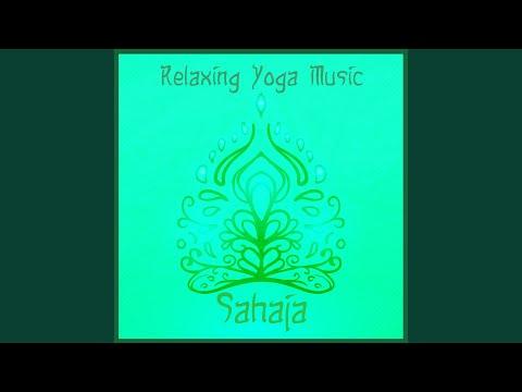 The Essence of Meditation