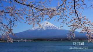 4K 富士山・絶景 ~桜編~ Amazing views Mt.Fuji and Cherry Blossoms 2017