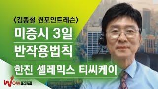 [김종철 원포인트레슨]  미증시 3일 반작용법칙