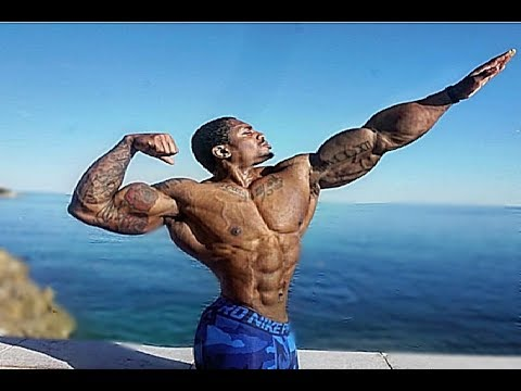 incredible physiques  aesthetic fitness motivation 2017